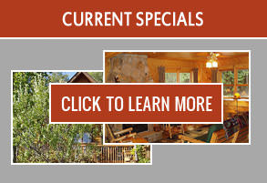 Current Timber Trail Lodge specials